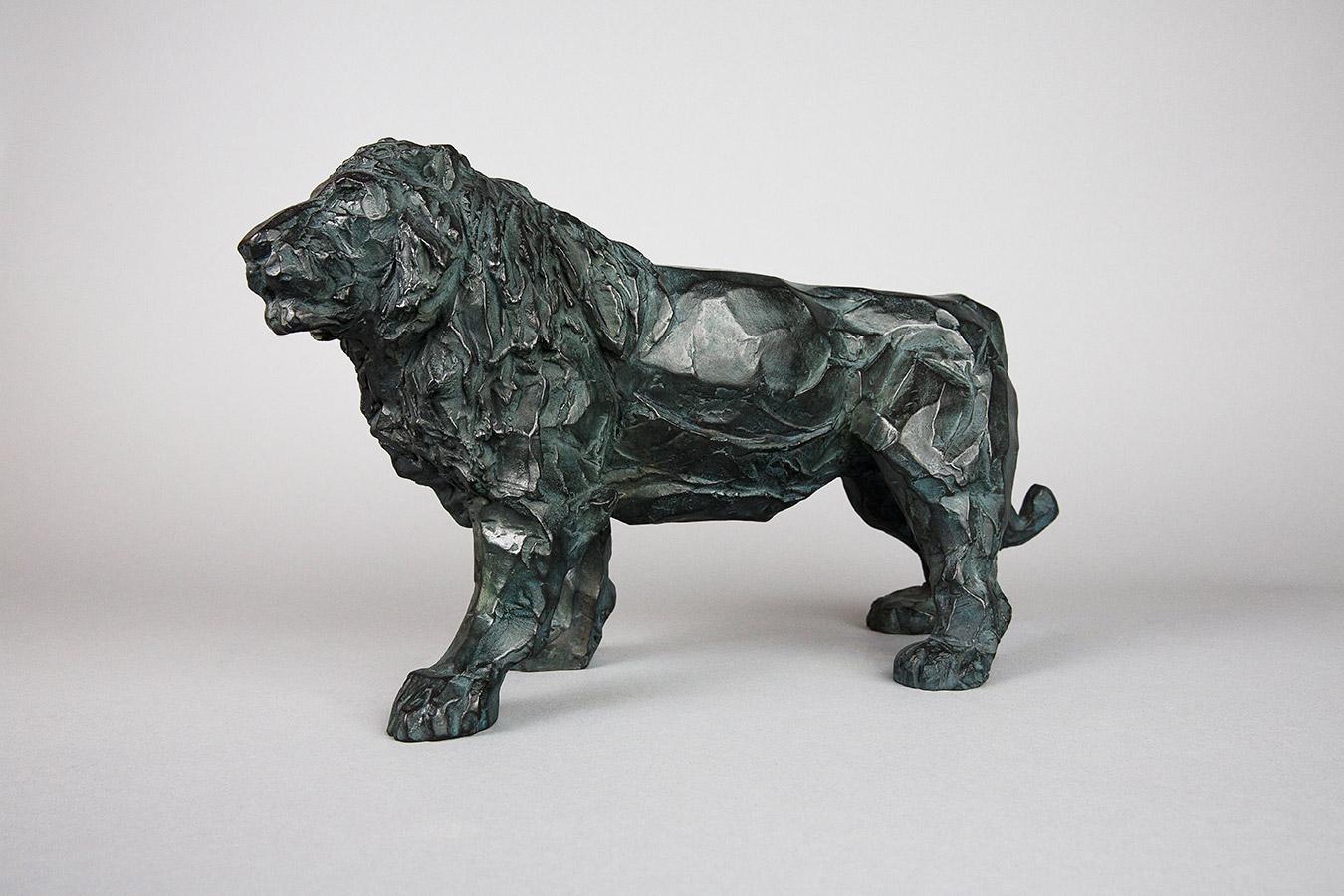 Toi lion